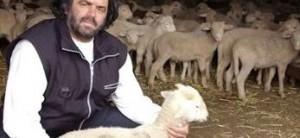 Abruzzo pecora