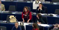 La parlamentare europea di M5S, Daniela Aiuto, con la figlia, interviene a Strasburgo. ANSA